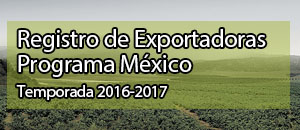 Programa Mexico