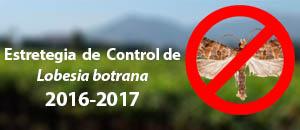 lobesia20162017v2