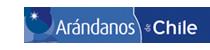 log arandanos