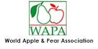 log wapa2