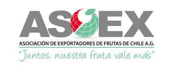 logo asoexweb